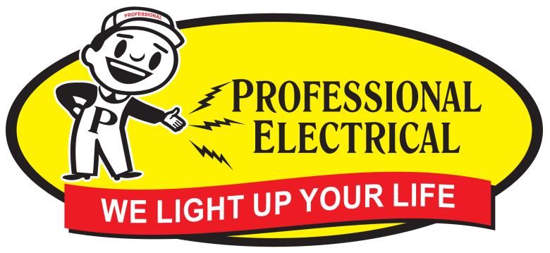 Professional Electrical in Edmonton AB
